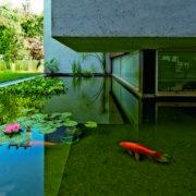 עיצוב בריכת דגים חיצונית מרהיבה
